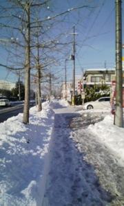 2009yukimiti.jpg