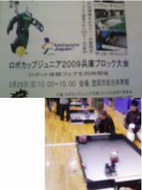 robo2009.jpg